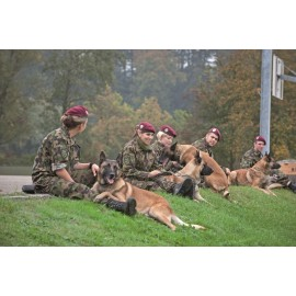 Postkarte: Hundeführer-Wettkampf SWISS OPEN