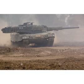 Panzer 87 Leo