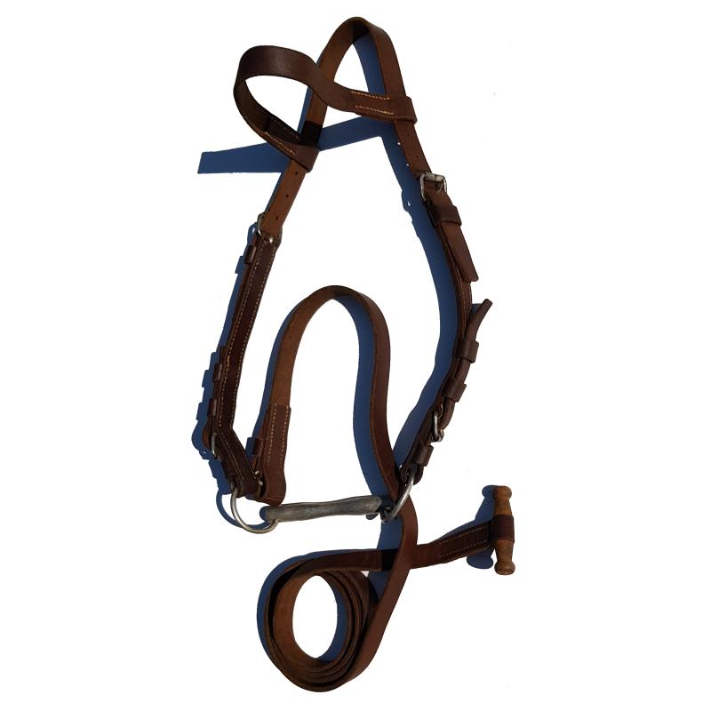 Pferdezaum mit Stangengebiss und Olivzügel