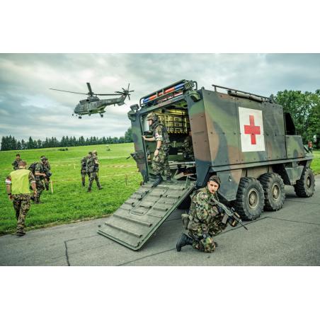 Sanitäts-Piranha und TH06 Super Puma im Fronteinsatz