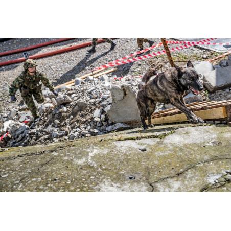 Hundeführer mit Diensthund sucht und rettet
